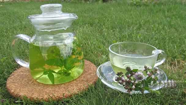 6 lahodných bylinkových čajů, které zaženou žízeň a prospějí zdraví