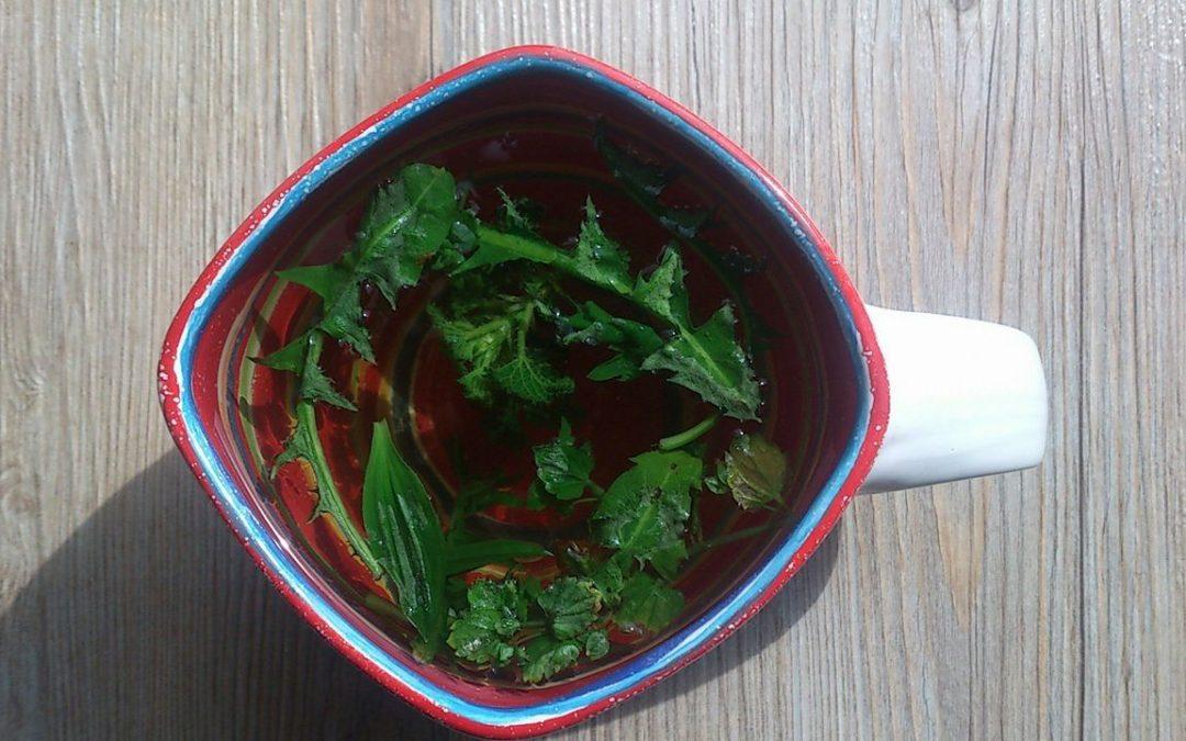 Jarní detoxikace s divokými bylinkami